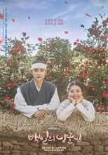 دانلود زیرنویس فارسی 100 Days, My Prince (Hundred Days' Husband / Baekirui Nanggunnim / 백일의 낭군님)                          2018
