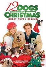 دانلود زیرنویس فارسی 12 Dogs of Christmas: Great Puppy Rescue                          2012