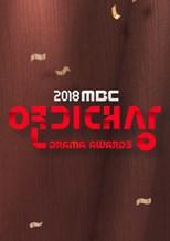 دانلود زیرنویس فارسی 2018 MBC Drama Awards (MBC Yeon-gi Daesang / MBC 연기대상)                          2018