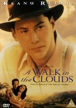 دانلود زیرنویس فارسی A Walk in the Clouds                          1995