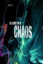 دانلود زیرنویس فارسی BBC The Secret Life of Chaos                           2010