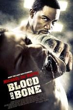 دانلود زیرنویس فارسی Blood And Bone                          2009
